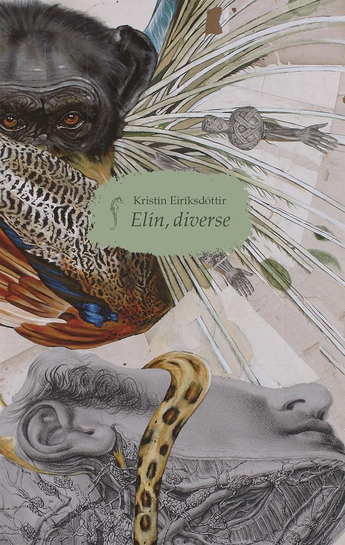 Elin, Diverse