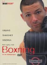 Wisesport / Boxning
