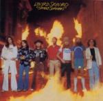 Street survivors 1977 (Rem)