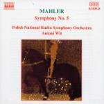 Symphony No 5 (Antoni Wit)