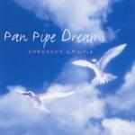 Pan pipe dreams 1976-91