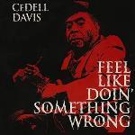 Feel Like Doin` Somethin` Wrong