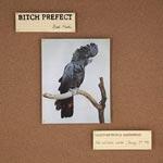 Hommager och pamfletter 1981
