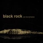 Black rock 2010