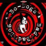 Bad bad dog! 2014