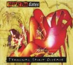 Terminal spirit disease -94