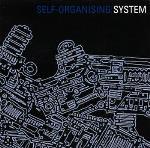 Self Organising System