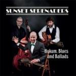 Hokum blues and ballads 2014