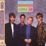 Essential 1980-88