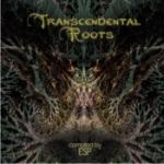 Transcendental Roots