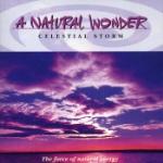 A Natural Wonder / Celestial Storm
