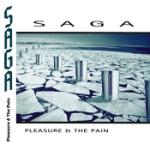 Pleasure & the pain 1997 (Rem)
