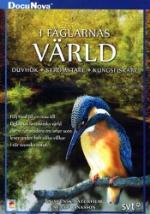 I fåglarnas värld