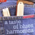 In The Pocket - A Taste Of Blues Harmonica