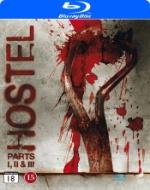 Hostel 1-3 / Box