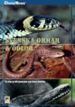 Svenska ormar & ödlor