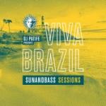 DJ Patife Presents Viva Brazil