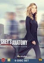 Grey`s Anatomy / Säsong 16