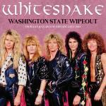 Washington state wipeout (Broadcast)