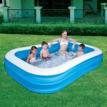 Bestway - Family Pool 262x175x51 cm (17854006)
