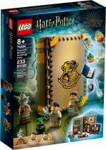 LEGO Harry Potter - Hogwarts¿ Moment: Herbology Class (76384)