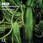 Trio Sonatas For Organ Bww 525-530