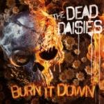 Burn it down (Picturedisc)