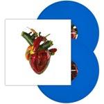 Torn arteries (Blue/Ltd)