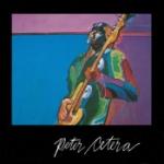 Peter Cetera 1981