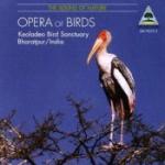 Sound Of Nature / Opera Of Birds