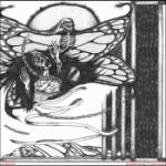 Clipped Beaks / Silk Panic
