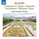 Fantasia In C Major/Menuetti/Variationen