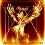 Wings 2019