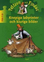 Knepiga Labyrinter Och Kluriga Bilder