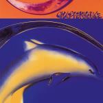 T-shirt / Vit M