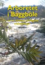 Arboretet I Baggböle - En Av Världens Nordligaste Trädsamlingar