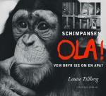 Schimpansen Ola - Vem Bryr Sig Om En Apa?
