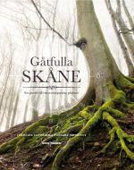 Gåtfulla Skåne - En Guide Till Mytomspunna Platser