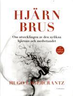 Hjärnbrus - Om Utvecklingen Av Den Nyfikna Hjärnan Och Medvetandet