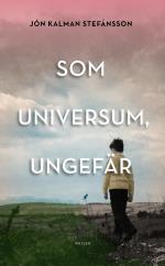 Som Universum, Ungefär - En Släktroman