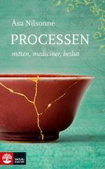 Processen - Möten, Mediciner, Beslut