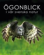 Ögonblick I Vår Svenska Natur