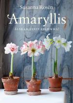Amaryllis - Älskad Vinterblomma!