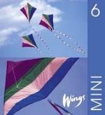 Wings Mini. 6, Elevbok