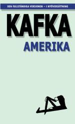 Amerika ; Den Försvunne