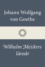Wilhelm Meisters Läroår