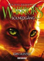 Warriors 2. Solnedgång