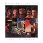 Tejphållare / Flamingo