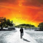 Skivmöbel / Zomo VS-Box 100/2 Valnöt