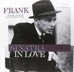 Skivmöbel / Zomo VS-Box 100 Valnöt